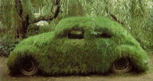 grass-vw-bug